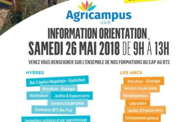 Information orientation